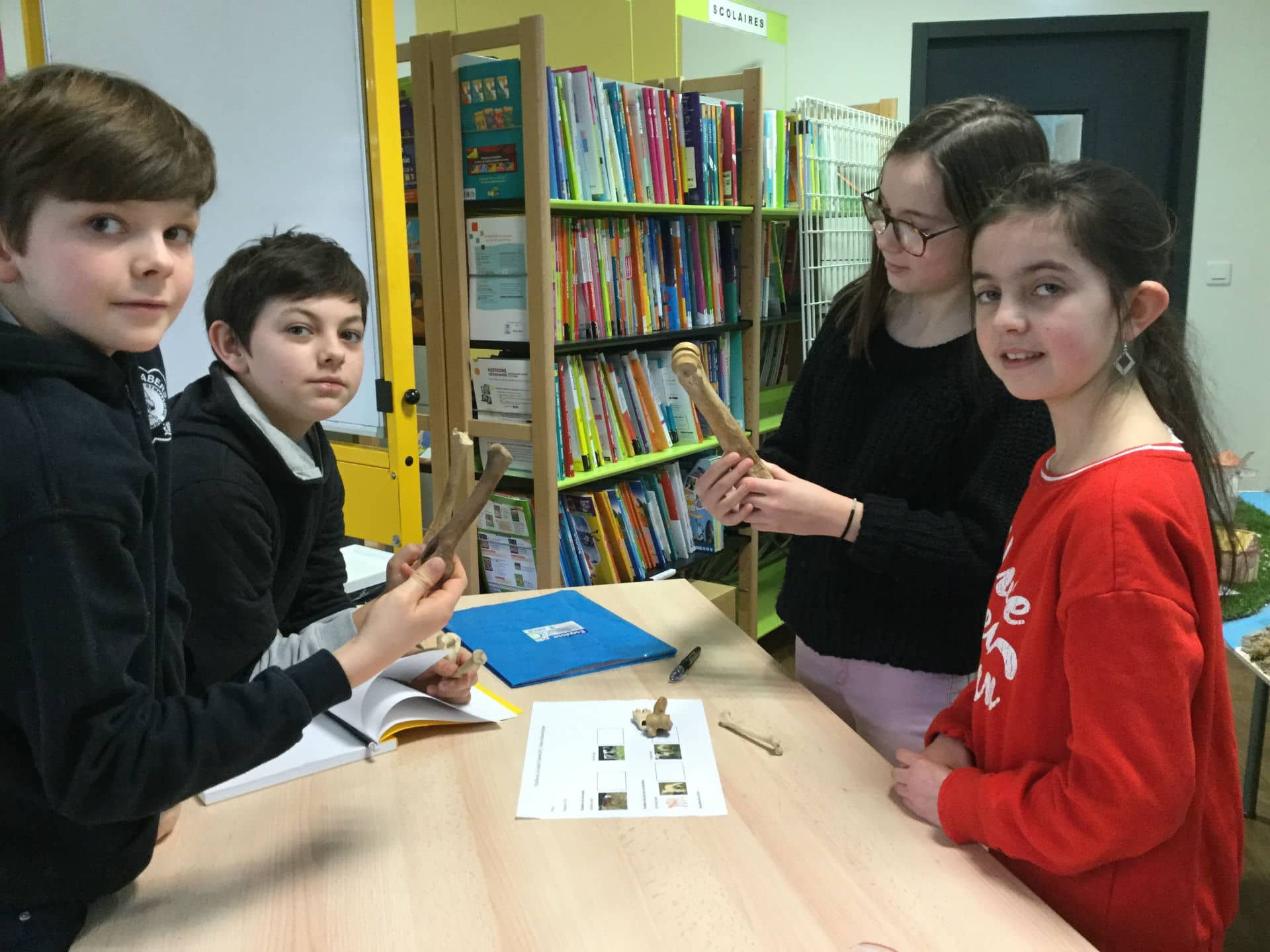 Un atelier d'archéologie au Collège Saint-Antoine de Lannilis