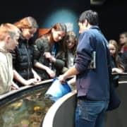 Aecs 6e Ecologie Environnement 03 Oceanopolis2